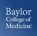 Baylor Faculty Publications